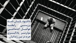 پایان نامه بررسی رابطه عوامل اجتماعی موثربر یادگیری جرم در بین زندانیان